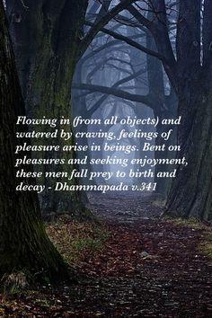 Dhammapada v.341, Theravada Buddhism