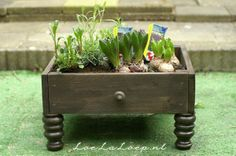 diy planter from and old fence great for Spring project http://www.loelaloep.nl/2012/04/06/diy-planter-from-an-old-fence-spring-summer-garden-projects/ <-Tutorial one could use a Drawer from a old dresser from Am Vets or Goodwill and upcycle something that would be trashed into something cute even make a small fairy garden good for indoor or outdoor