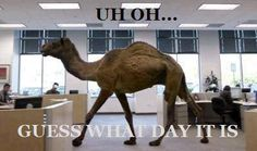 Guess What Day It Is! I die when this commercial comes on