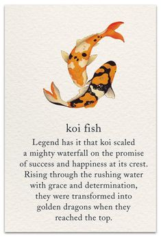Inside Message: From koi fish to dragon, congratulations on scaling your own waterfall! Koi Fish Bell Dragonfly belldragonflytm Totems & Spirit Animals Inside Message: From koi fish to dragon, Words Quotes, Sayings, Fish Quotes, Spiritual Symbols, Spiritual Drawings, Sanskrit Symbols, Hindu Symbols, Nature Symbols, Symbols And Meanings