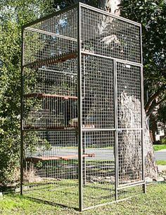 Cat Tower - Betta Pet Systems - Preston, Victoria Bird Cage Design, Cat Habitat, Cat Kennel, Large Bird Cages, Outdoor Cat Enclosure, Cat House Diy, Cat Run, Puppy Beds, Outdoor Cats