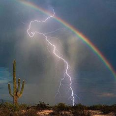 This photo of a bolt of lightning hitting the ground in front of a rainbow was captured on camera by Greg McCown in Marana, Arizona. The avid storm chaser used a lightning trigger attached to his camera to bag the shot. Nature Pictures, Cool Pictures, Beautiful Pictures, Landscape Pictures, All Nature, Amazing Nature, Natur Wallpaper, Lightning Strikes, Lightning Storms