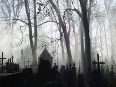 Love this! I set several scenes from my Southern Ghosts Series in cemeteries! www.elainecalloway.com