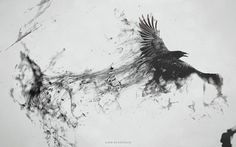 Raven Bird Flying Minimalism Smoke Art Abstract Black Gray BW WallpapersByte com Smoke Drawing, Smoke Art, Aquarell Tattoo Schwarz, Elf Rogue, Raven Flying, Bird Flying, Widder Tattoos, Rabe Tattoo, Raven Bird