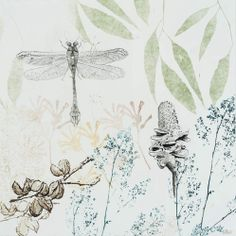 DRAGONS & BANKSIAS SERIES: Dragonfly, Banksia and Hakia 2014