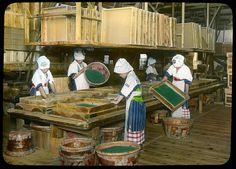 re-firing the green tea in paper pans  Enami Studio Lantern Slide No : 601.  About 1920's, Japan