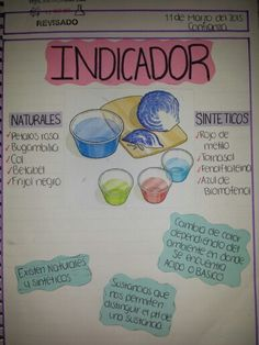 Indicador Natural Col Morada