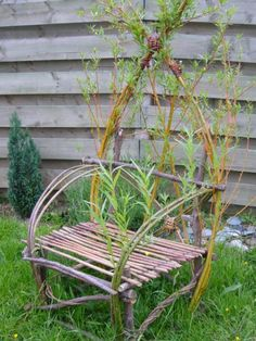 Living willow chair...would so love one of these!
