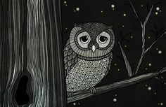 owl-illustration-by-night