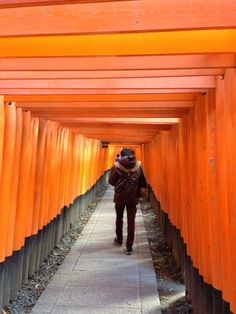 Sembontorii @Fushimi Inari, Kyoto