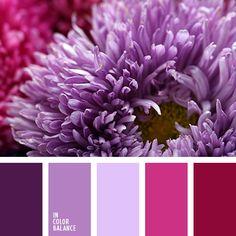оттенки насыщенного фиолетового цвета, оттенки пурпурного, оттенки фиолетово-голубого цвета, оттенки фиолетового, пурпурный цвет, розовый, розовый и фиолетовый, сиреневый цвет, фиолетовый и розовый, холодные оттенки фиолетового, цветовое сочетание.