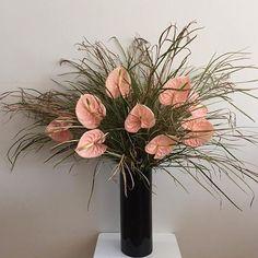 Tropical Flowers, Floral Style, Floral Design, Floral Arrangements, Flower Arrangement, House Plants, Planting Flowers, Beautiful Flowers, Rose