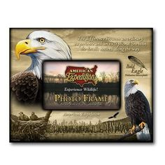 American Expedition Bald Eagle Canvas Photo Frame * This is an Amazon Affiliate link. Be sure to check out this awesome product.