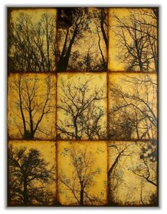 Encaustic More trees. Abstract Landscape, Landscape Paintings, Abstract Art, Photocollage, Encaustic Painting, Art Plastique, Tree Art, Painting Techniques, Printmaking