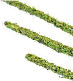 Super Moss 22050 Moss Covered Stakes, Green, 18-Inch Height by Super Moss. $9.28. Moss covered stakes. Measures 18-inch height. Available in green color. Covered in preserved green moss. This moss stakes covered in preserved green moss. Available in green color. It measures 18-inch height.. Save 31%!