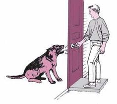 Did you know that over 60% of all burglaries occur between 6 a.m. to 6 p.m. and that 61% involve forcible entry. More than 30% of burglars enter through unprotected doors or windows. The old saying is true...dogs are good deterrants to burglars. Even a small, noisy dog can be effective. Take precaution and protect your family and pets with these home safety DIY tips.