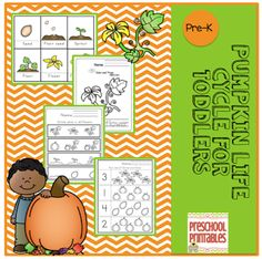 Pumpkin Life Cycle for Toddlers By GwynOctober 12, 2014 // No commentsPumpkin Life Cycle for Toddlers