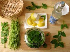Készítsünk üde citromfűlikőrt a teához Vodka, Food And Drink, Tea, Drinks, Ethnic Recipes, Kitchen, Table, Fimo, Drinking