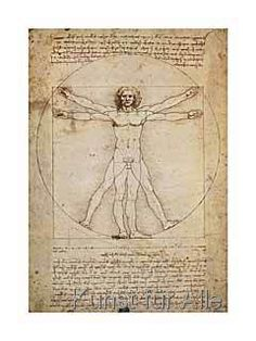 Leonardo da Vinci - Schema Delle Proporzioni