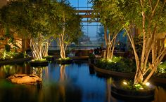 Peaceful lobby water garden