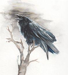 Black Raven by Amaranth44