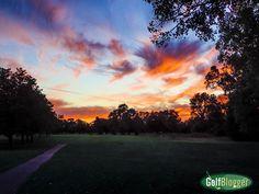 Darkness Falls Over Green Oaks