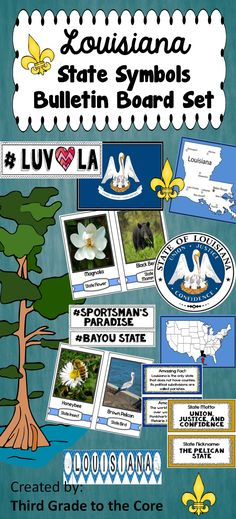Louisiana State symbols bulletin board set makes a great educational classroom display! This set comes with a Louisiana bunting title banner, State flag, seal, state outline, USA map with Louisiana marked, 10 symbol photo cards, 8 information cards, fleur de leis, and cute # signs.