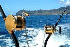 I want to go deep sea fishing