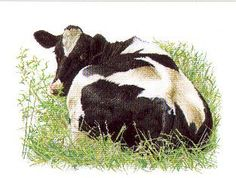 Holstein Cow Looking Back - designed by Thea Gouverneur (counted cross stitch kit)