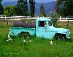 Mint Teal Green purple flowers Old Truck Wild by #CheyAnneSexton #fpoe