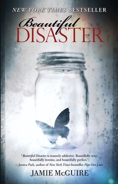 Beautiful Disaster by Jamie McGuire - a wonderful romance, full of drama, all very well done. It is not a fairy tale everything-is-perfect-hugs-and-kisses romance, but it is a great one. I was hooked on the characters and loved the main character. Travis is every girl's dream in lots of ways.