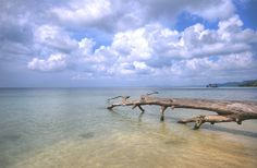 Elephant Cove Beach, Havelock Islands, Andaman & Nicobar, India | Flickr - Photo Sharing!