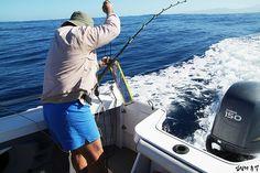 ★입질의 추억★ :: 뉴칼레도니아 낚시투어 - 대물과의 사투