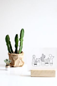 cactus print // available in the shop