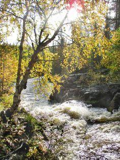 Kuerlinkat, Ylläs Montana, River, Outdoor, Outdoors, Flathead Lake Montana, Rivers, Outdoor Games