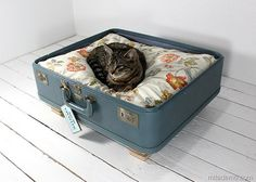 Will be making this as soon as I can find a suitcase to suit. for my kitty!