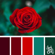 25 Color Palettes Inspired by Pantone Spring/Summer 2019 Color Trends Rose colors // Get inspired by these beautiful color palettes based on the Spring/Summer 2019 PANTO Color Schemes Colour Palettes, Colour Pallette, Color Palate, Color Trends, Color Combos, Exterior Paint Colors For House, Color Swatches, Summer Colors, Color Theory