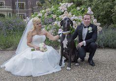 www.Trouwgeheimen.nl/trouwfotos-met-hond/ Girls Dresses, Flower Girl Dresses, Wedding Dresses, Flowers, Fashion, Dresses Of Girls, Bride Dresses, Moda, Bridal Gowns