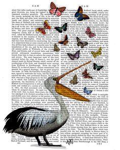 Pelican and Butterflies