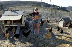 WWOOF volunteers pitch in on organic farms in exchange for lodging worldwide.