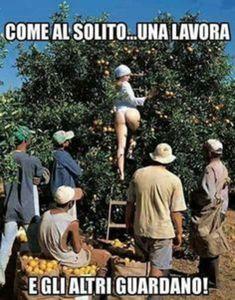 meme italiani foto belle che fanno ridere spassose da scaricare gratis 2499148 Hey You, Butt Workout, Funny Pictures, Nerd, Lol, Couple Photos, Memes, Anime, Earth