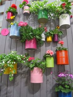 Stunning Vertical Garden for Wall Decor Ideas Do you have a blank wall? do you want to decorate it? the best way to that is to create a vertical garden wall inside your home. A vertical garden wall, also called… Continue Reading → Vertical Garden Diy, Vertical Gardens, Diy Garden Bed, Herb Garden, Pot Jardin, Recycled Garden, Recycled Cans, Walled Garden, Diy Planters