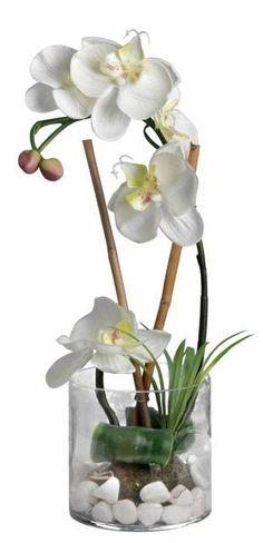 Orchidée blanche 36cm avec vase en verre sur Jardindeco