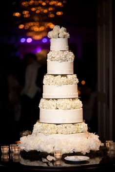 Houston Wedding from Chris Bailey Photography + Keely Thorne Events Beautiful Wedding Cakes, Beautiful Cakes, Amazing Cakes, Mod Wedding, Dream Wedding, Perfect Wedding, Cake Wedding, Gothic Wedding, Glamorous Wedding