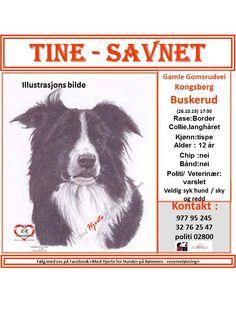 Link til Delsiden med info om Trine https://www.facebook.com/hjertegruppa/photos/a.871879662838662.1073741828.773451359348160/1220286171331341/?type=3&theater LINK TIL GRUPPE VEGG https://www.facebook.com/groups/729942270382489/?fref=ts