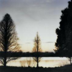 Lynn Geesaman (1938). Sans titre (Bernheim Arboretum, Clermont, Kentucky), 1993, Epreuve chromogène.