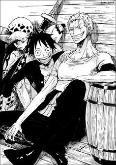 Law, Luffy and Zoro