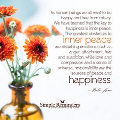 As human beings we all want to be happy and free from misery. We have learned that the key to happiness is inner peace. The greatest obstacles to inner peace are disturbing emotions such as anger, attachment, fear and suspicion, while love and compassion and a sense of universal responsibility are the sources of peace and happiness. — Dalai Lama