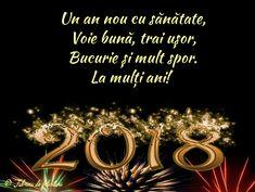 Un an nou cu sănătate, Voie bună, trai ușor, Bucurie și mult spor. La mulți ani!