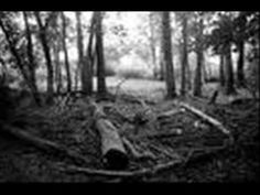 The Legend Of Wooley Swamp - YouTube